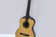 Guitare acoustique en carbone