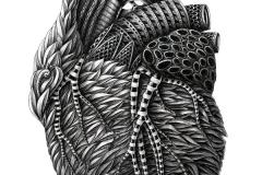 Alex-Konahin-Heart-Coeur-Illustration